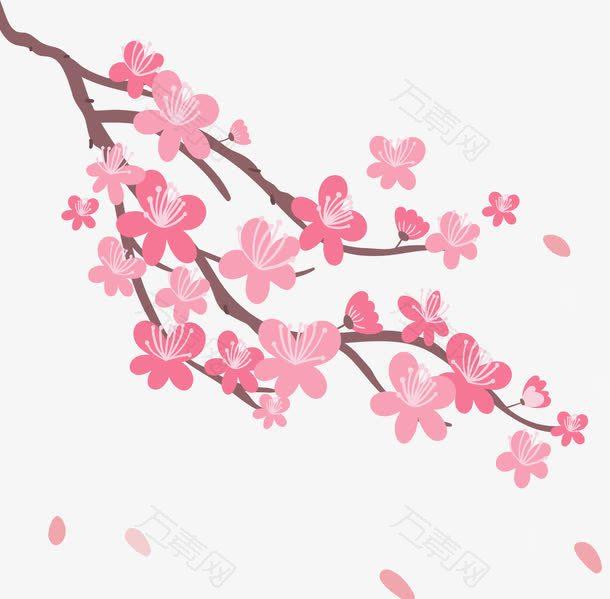 飞舞粉红樱花树枝