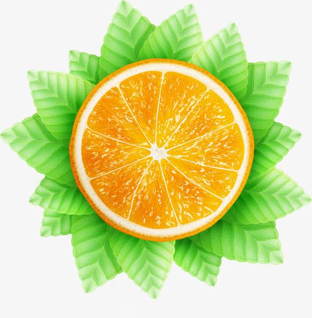 水果绿以矢量图