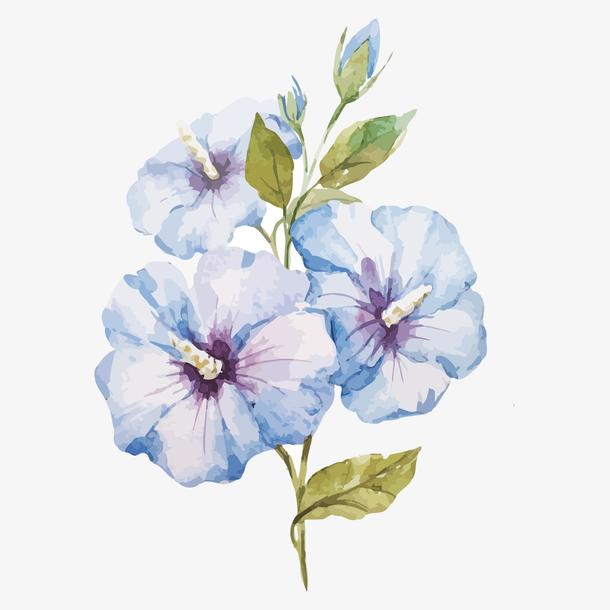 手绘蓝色清新母亲节花朵装饰