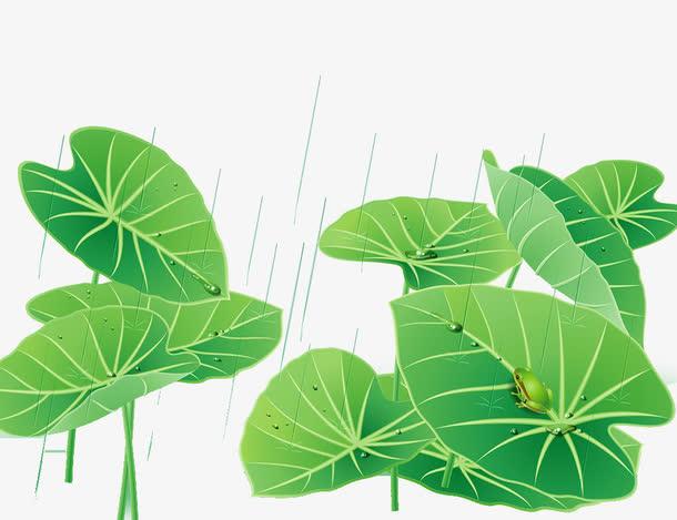 下雨天小清新绿色荷叶海报