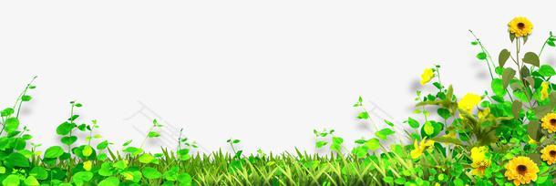 手绘小草草地鲜花