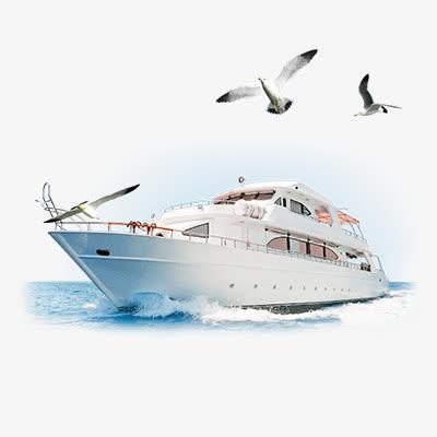 轮船大海海鸥免抠素材