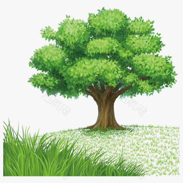 绿色参天大树