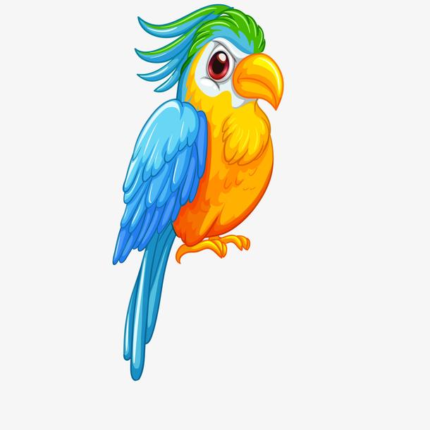 卡通鹦鹉鸟类动物设计
