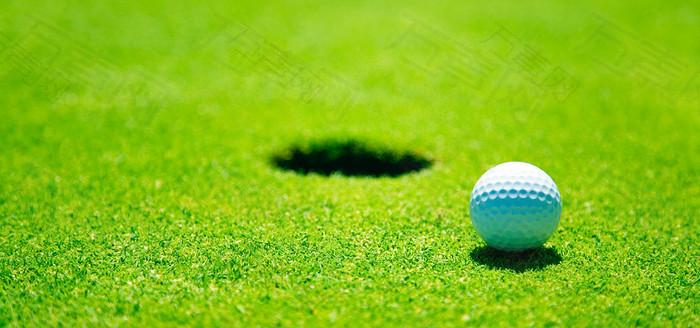 草地上的高尔夫球