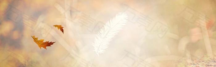 秋季秋装背景banner