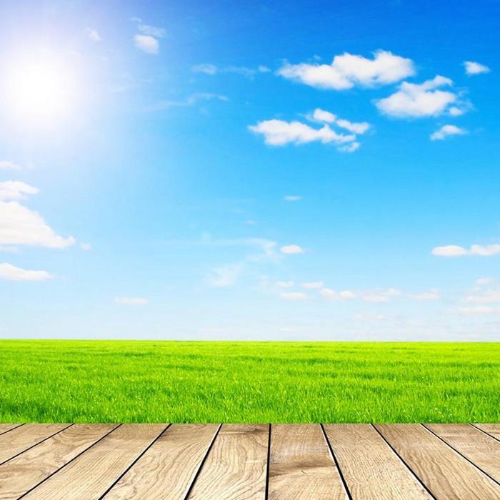 蓝天白云草地木地板背景
