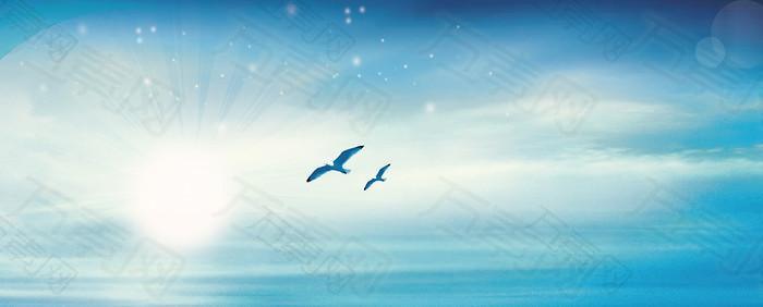 蓝天海鸥背景