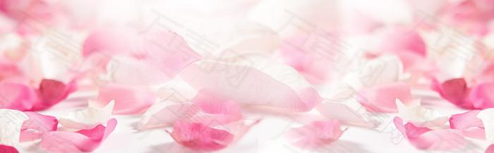 花瓣 banner