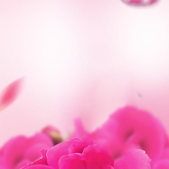 粉色浪漫花虚化背景