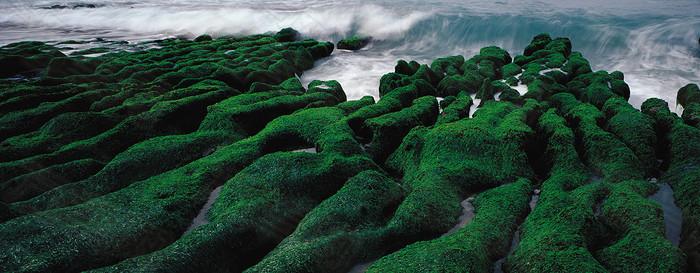 绿地瀑布海报图