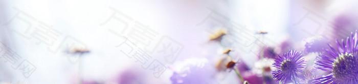 唯美紫色花朵梦幻海报背景