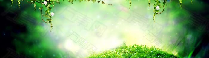墨绿色花藤背景