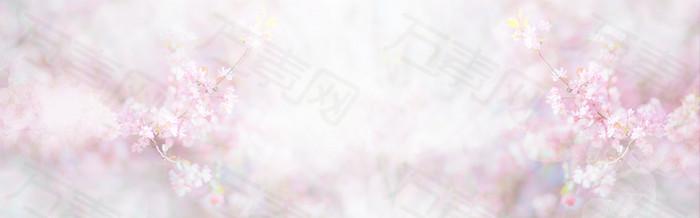粉色 樱花背景 banner