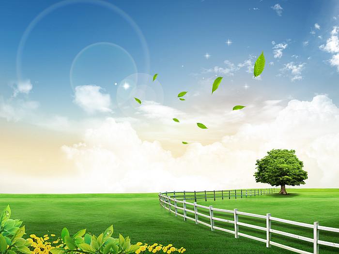 绿色草地蓝天白云背景