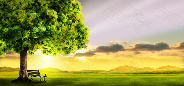 唯美大树草地背景