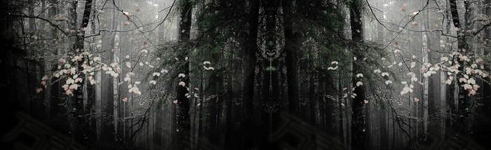 深色黑白树林唯美背景banner