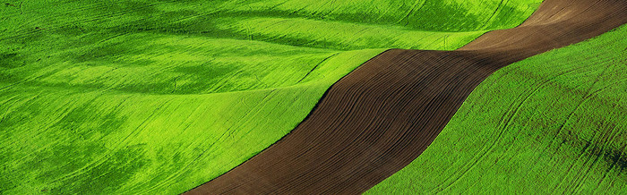 绿野跑道合成图