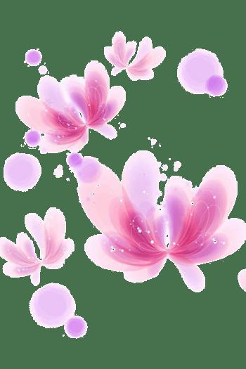 淡粉色花朵装饰