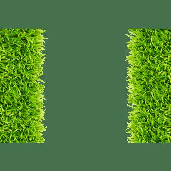 绿色环保草坪素材