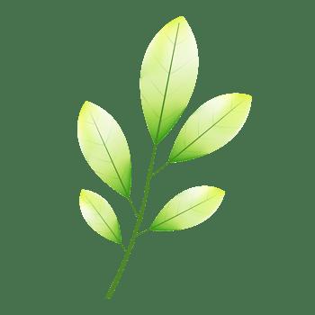 绿色卡通树叶免费下载