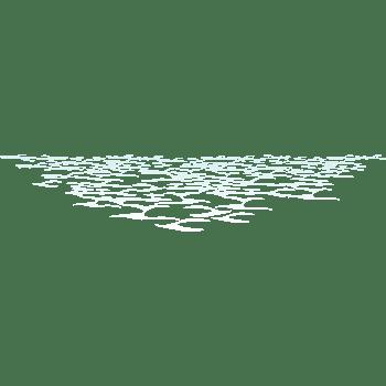 水波纹矢量
