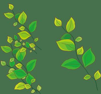 手绘卡通树叶插图矢量图免费下载