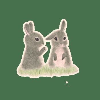 毛绒小兔子