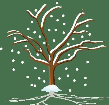 树木冬季雪花海报素材