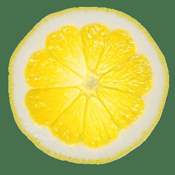柠檬片透光高清切片