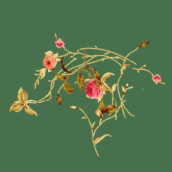 春天里的花