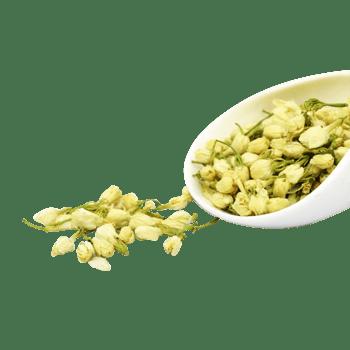 菊花茶胎菊