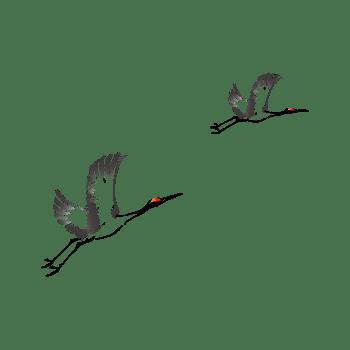 水墨飞翔的仙鹤