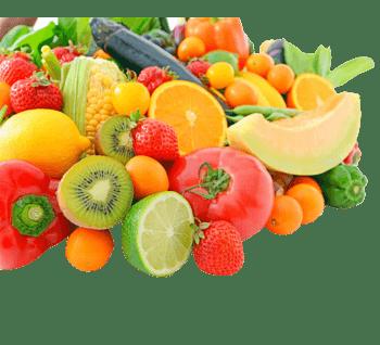 西红柿玉米草莓瓜果蔬菜