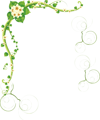 花藤可爱绿色