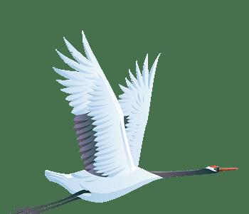 卡通虫鸟虫鸟插画