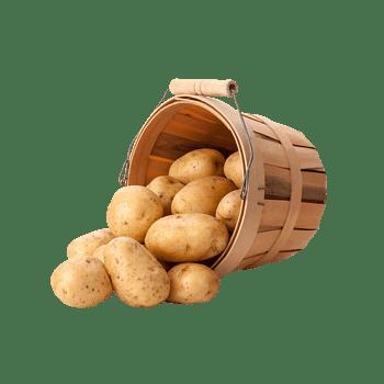 散落的土豆