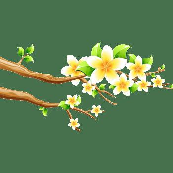 春天的鲜花树枝