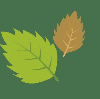 两片树叶免扣素材