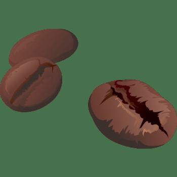 矢量手绘咖啡豆