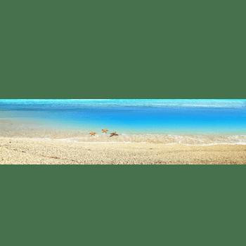 沙滩大海背景