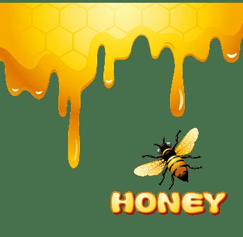 可爱卡通蜜蜂和浓稠甘甜蜂蜜