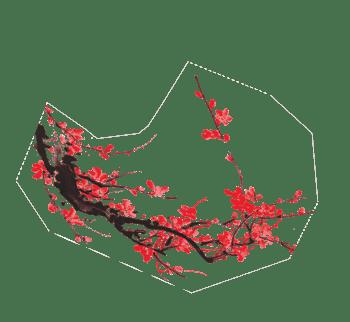 梅花、中国风梅花、水墨梅花