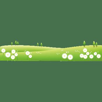 蒲公英花绿色草坪