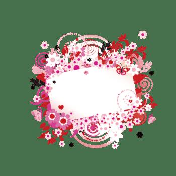 花卉 淡粉色花 清新 海报装饰