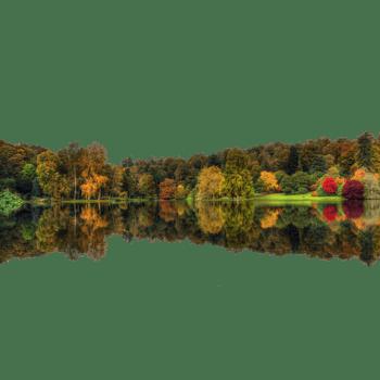 秋天森林倒影图