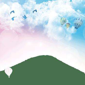 天空海鸥热气球