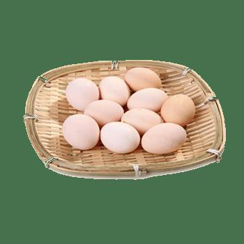 农家自养土鸡蛋