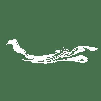 白色烟雾缥缈效果装饰