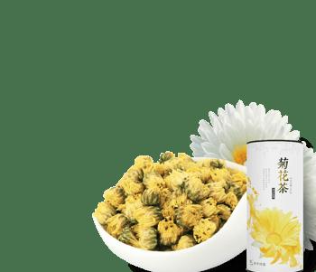 黄色菊花茶胎菊